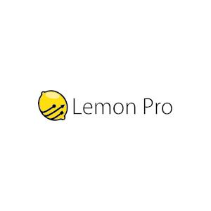 Doradztwo informatyczne - LEMON PRO